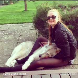 sophie turner and Northern Inuit dog
